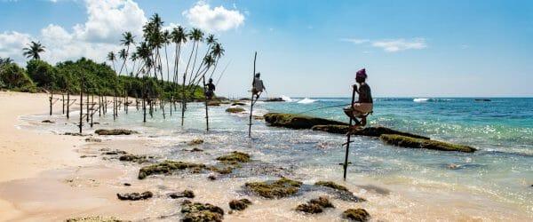 Study Sustainability in Sri Lanka with Worldwide Navigators