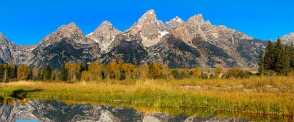 Study Sustainability in Grand Teton National Park with Worldwide Navigators
